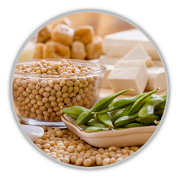 Phytoestrogens For Hormone-Positive Cancer